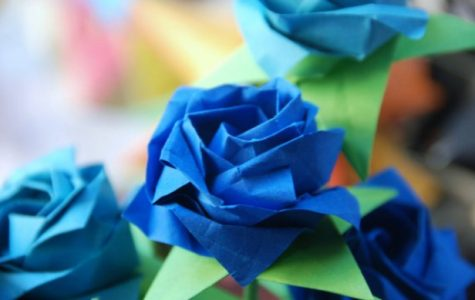Sophomore's origami creations benefit children with rare diseases