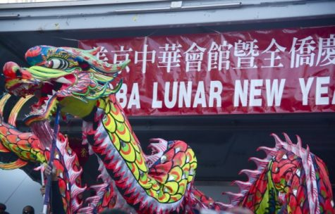 Chinatown parade celebrates the year of the dragon