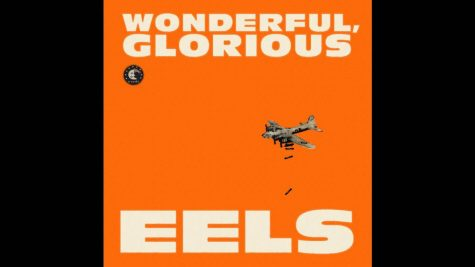The Eel's first album in four years disappoints