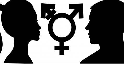 Gender-neutral pronouns: the next step for today's progressive world