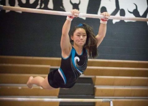Gymnastics team places third at counties
