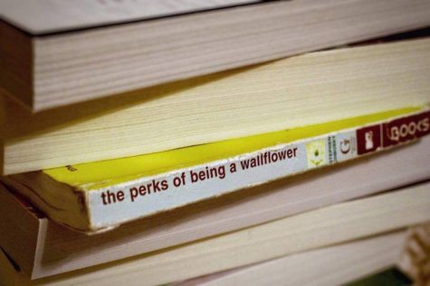 Book Reviews: The Perks of Being a Wallflower