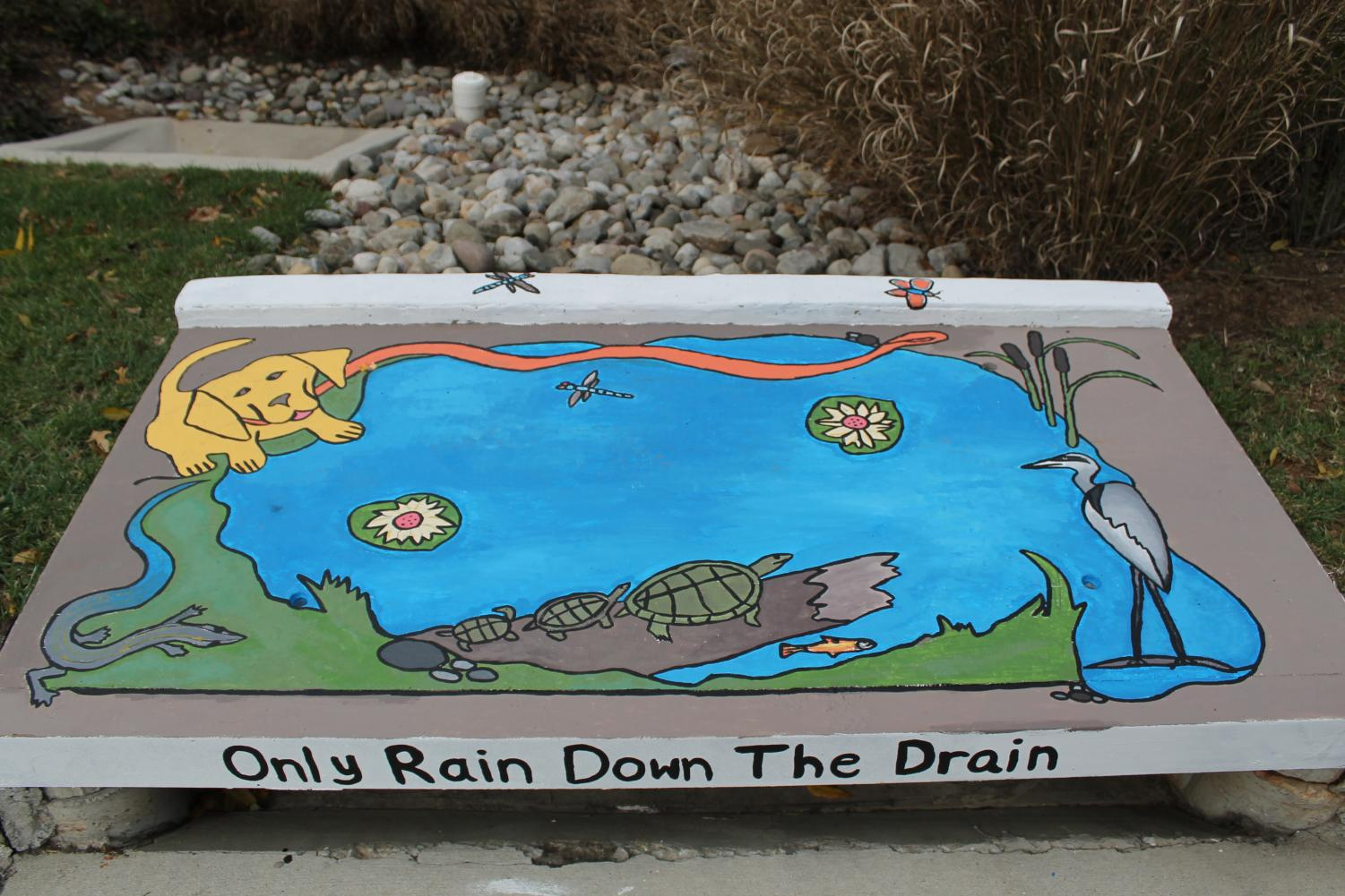 A previous storm drain art contest winner reminds individuals to be mindful about what goes down the drain. The contest has been going on for multiple years and features a variety of categories that contestants can choose to enter. Photo courtesy Montgomery County Department of Environmental Protection.
