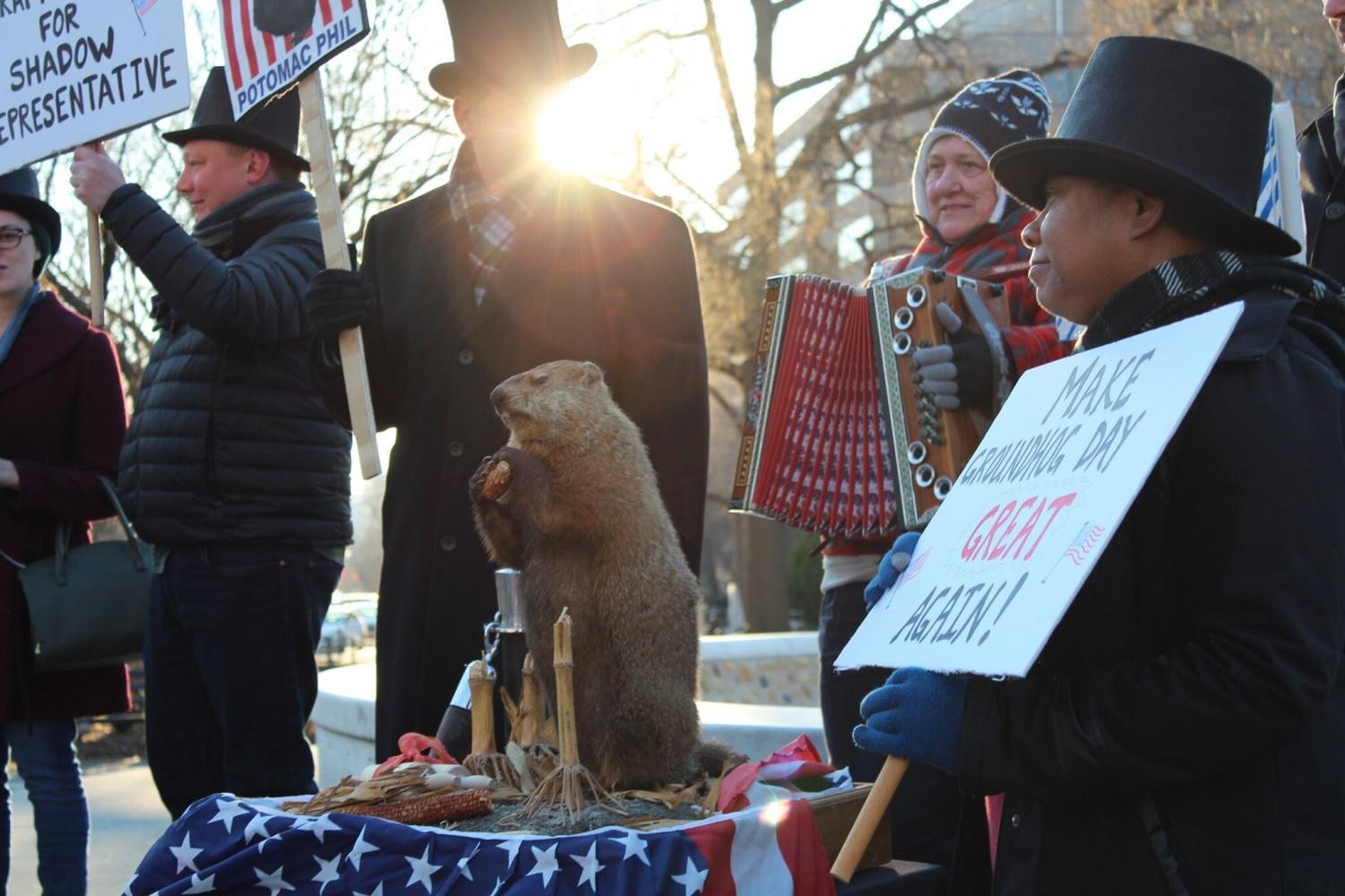 D.C. residents congregate in DuPont Circle for D.C.'s annual Groundhog Day. Since 2012, Potomac Phil has offered his winter weather predictions. Photo by Eva Herscowitz.
