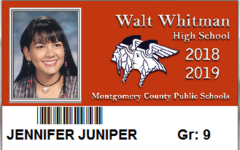 Student IDs change color for security