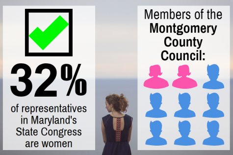Number of women in local government increases; follows national trend