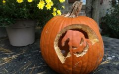 Trick-or-treating or: how I learned to stop worrying and love the sugar bomb