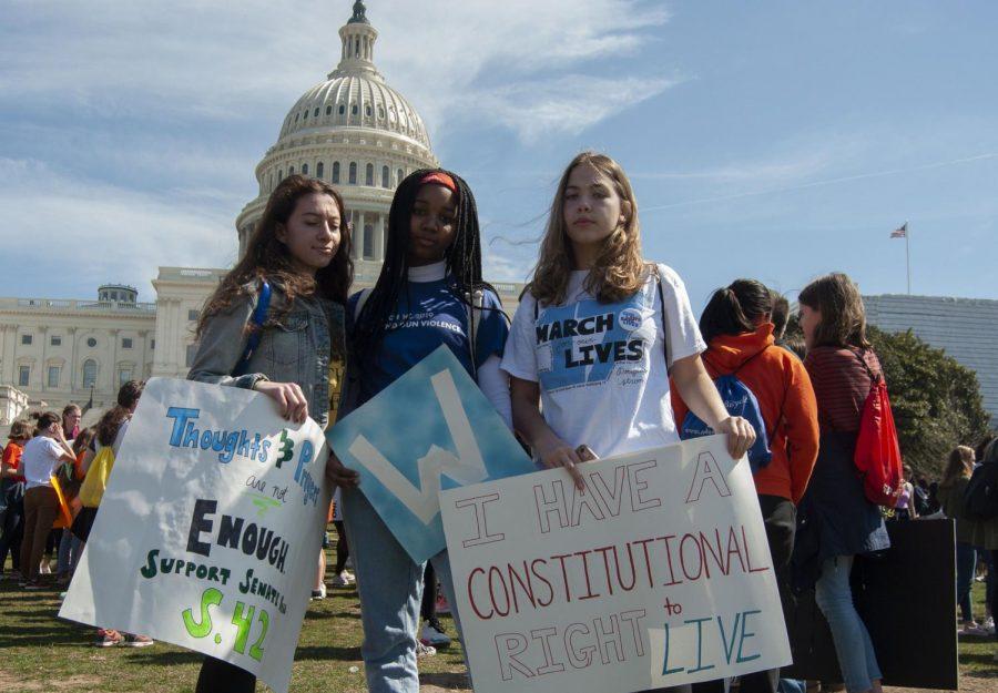 Gun control walkout in photos