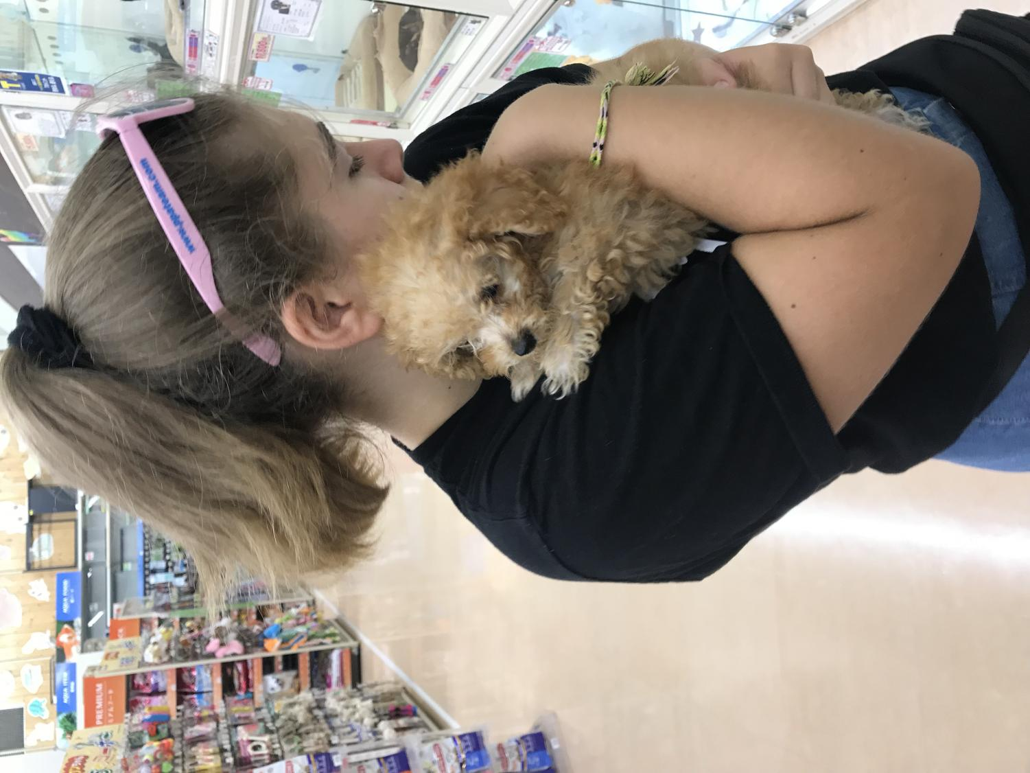 Eva+Levy+holds+a+puppy+for+sale+at+the+grocery+store+in+Tokyo%2C+Japan+she+named+Simba%2FCarji.+In+addition+to+food+and+generic+supplies%2C+the+store+also+sold+other+pets+such+as+turtles%2C+cats%2C+fish%2C+and+parriots.+There+are+puppy+stores+all+over+Tokyo%2C+Japan.+One+chain+puppy+store+called+%22P%27s+Firsts%22+has+multiple+locations+in+Shebuya.+If+someone+in+Japan+wishes+to+buy+a+puppy%2C+they+can+take+it+home+for+a+few+days+as+a+%22test+run%22.+This+is+what+my+friend+Lisa+Sugimura---whom+I+stayed+with+for+two+weeks---did+with+her+dog%2C+Roxie.+Lisa+is+alergic+to+dogs+so+they+wanted+to+make+sure+Roxie+would+be+a+good+fit+to+the+family.+