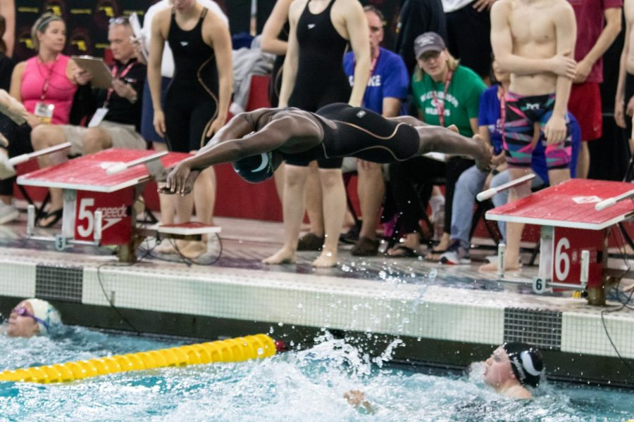 Freshman Elena Harrison dives into the pool off a relay start during the girls 4x200 medley relay as senior Annie Morris finishes.