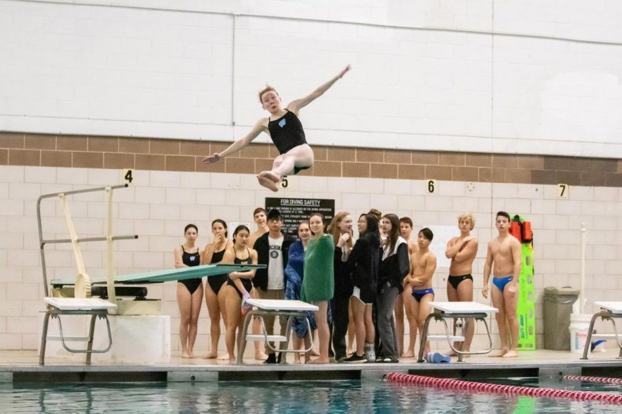 Donner mid-dive at the MCPS Division 1 Championship.