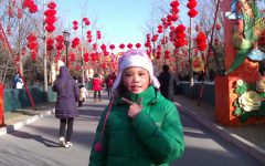Welcoming the spring with Chinese New Year