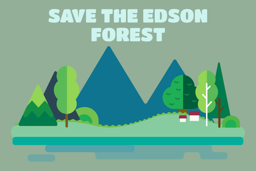 Helping save the Earth, especially forests such as the Edson Lane Forest, can curb the devastating effects of climate change.