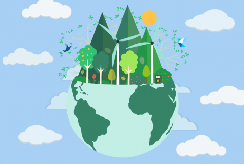 Going green: raising my environmental sustainability for two weeks