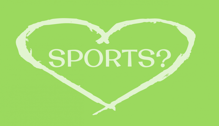 I'm not a sports lover, but I love my sport
